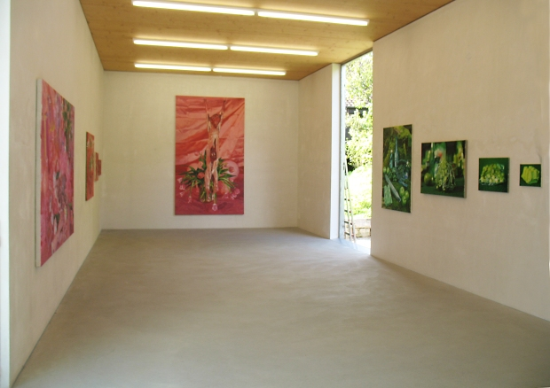 Selz  art contemporain 2008