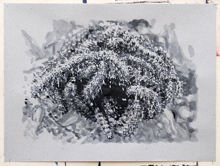 Pat Noser Katerpillar 2 2019 38 x 50 cm Tusche auf Papierm.jpg